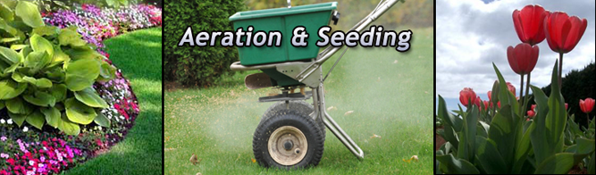 Aeration / Seeding Saddle River, NJ - image