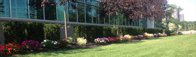 Commercial Lawn Maintenance Saddle River, NJ - Banner