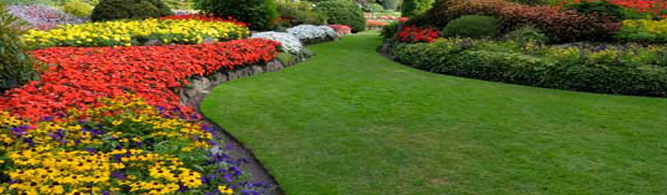 Landscaping Contractor Paramus, NJ - Banner
